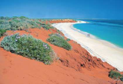Shark Bay Francois Peron National Park