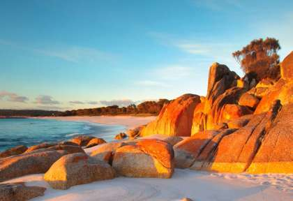 Tasmanie, Bay of Fires