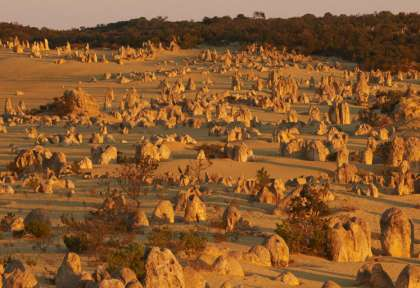 Nambung national Park The Pinnacles