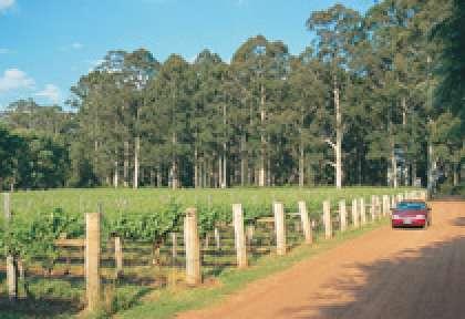 Australie de l'Ouest vignobles