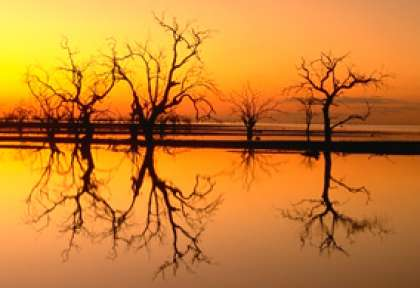 new south wales - outback Menindee Lakes
